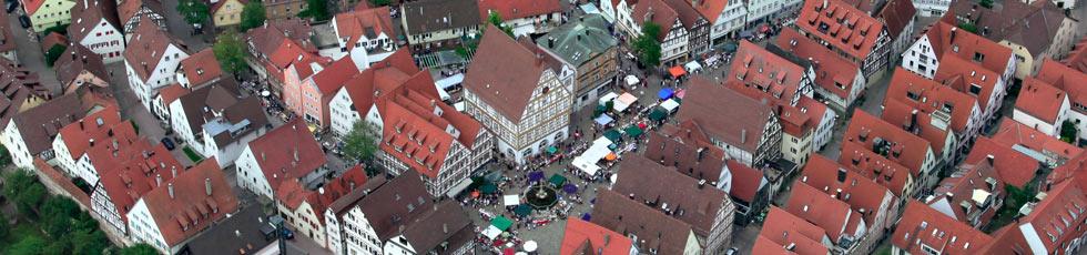 Blick auf Leonbergs historische Altstadt (Foto: Vilja Staudt)
